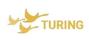 Turing web logo