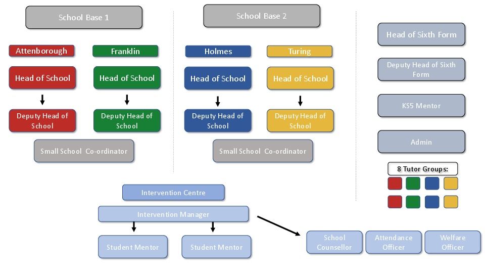 School system web diagram